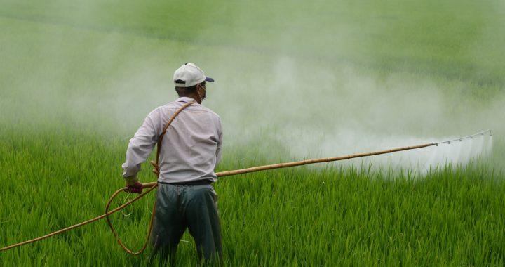 La Thaïlande va interdire le glyphosate