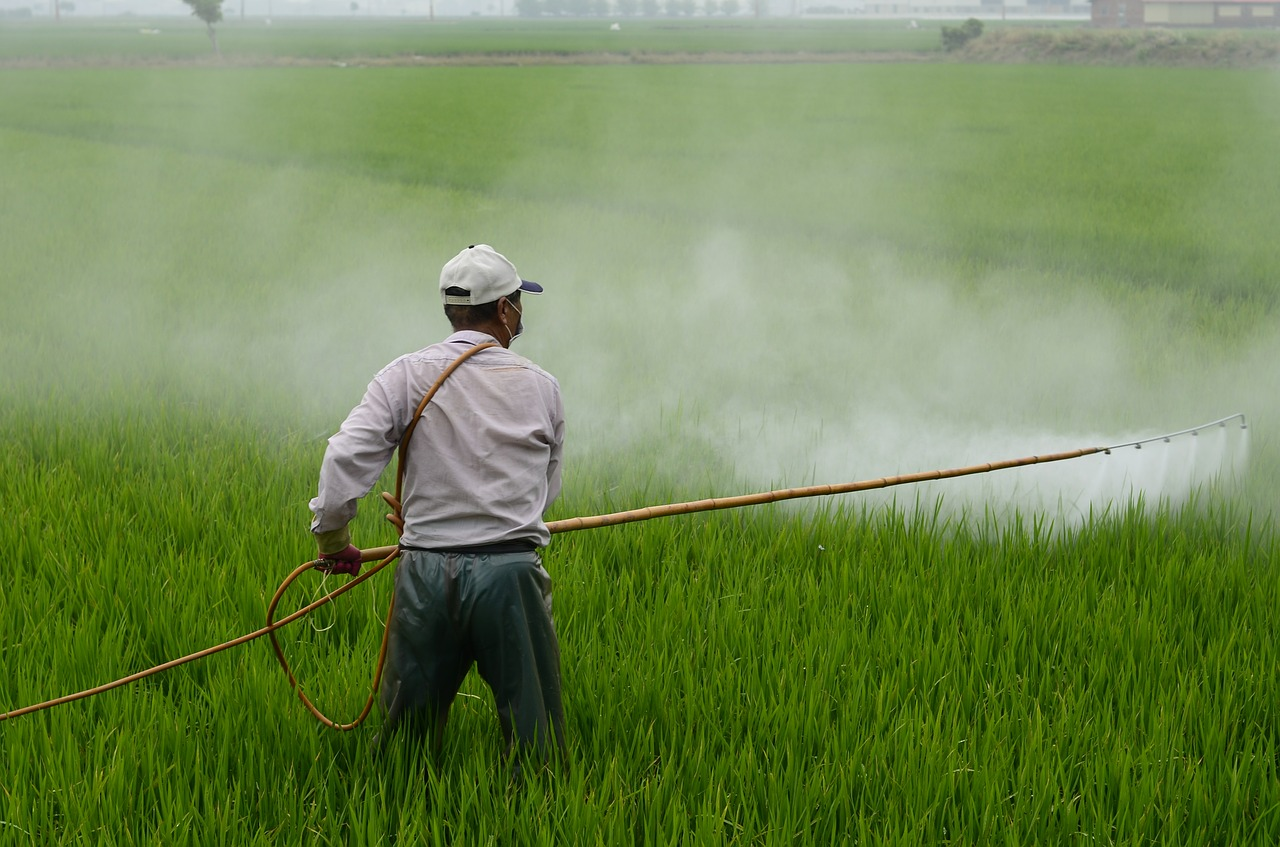 Epandage pesticide glyphosate