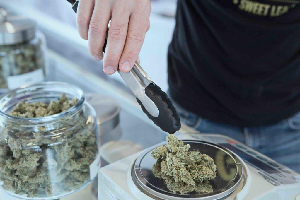 recherche cannabis medical